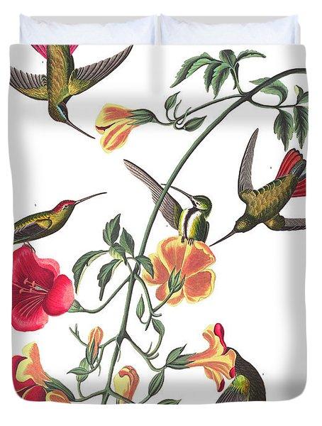 Mango Hummingbird Bird Duvet Cover