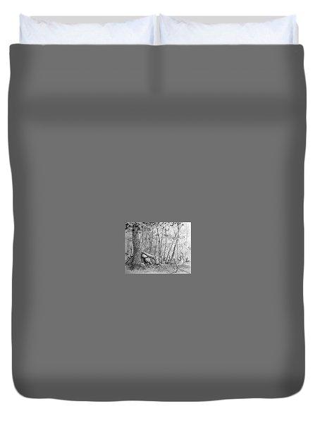 Many Balanced Rosks Duvet Cover