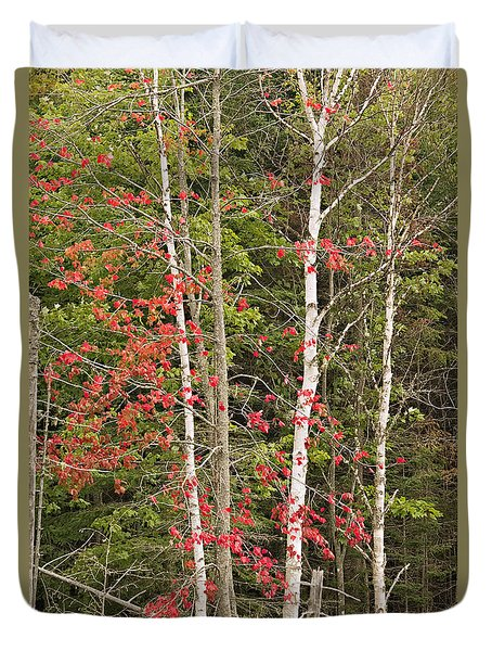 Duvet Cover featuring the photograph Maple Birch by Peter J Sucy