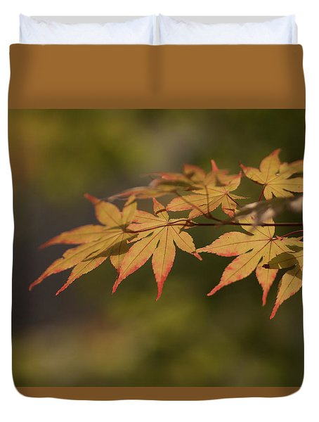 Maple Duvet Cover by Hyuntae Kim