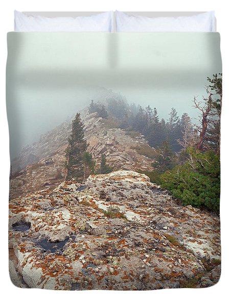 Marble View Fog-sq Duvet Cover