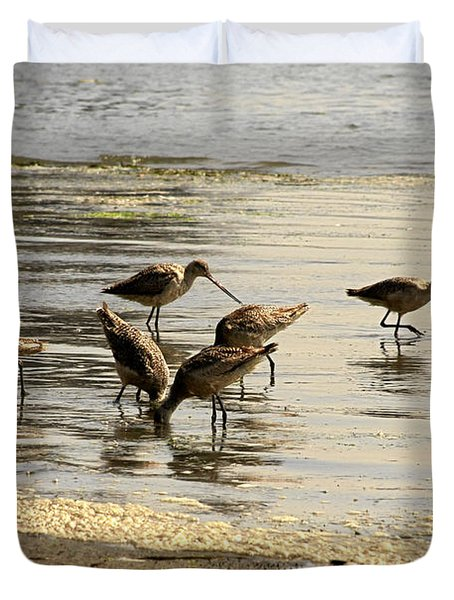 Marbled Godwit Birds At Sunset Duvet Cover by Christine Till