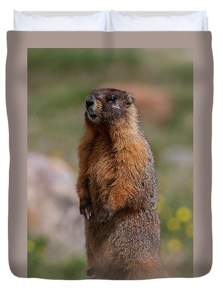 Duvet Cover featuring the photograph Marmot by Gary Lengyel
