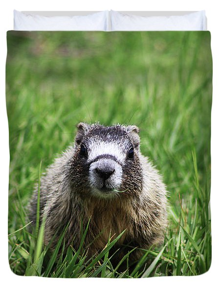 Duvet Cover featuring the photograph Marmot Pup by Alyce Taylor