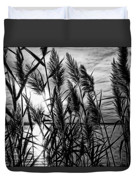 Marsh Grass Bw Duvet Cover
