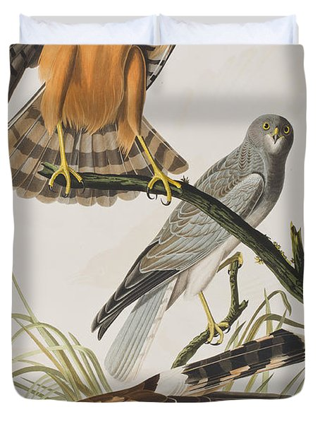 Marsh Hawk Duvet Cover