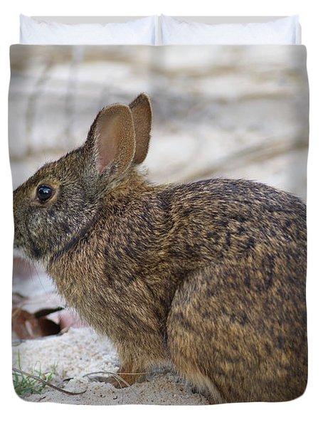 Marsh Rabbit On Dune Duvet Cover