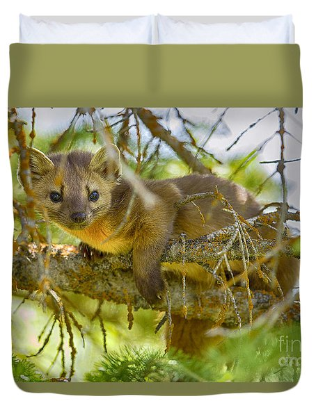 Marten Duvet Cover by Aaron Whittemore
