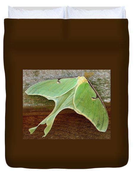 Maryland Luna Moth Duvet Cover