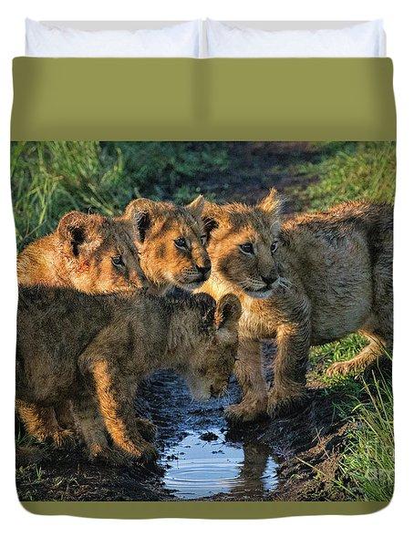 Duvet Cover featuring the photograph Masai Mara Lion Cubs by Karen Lewis