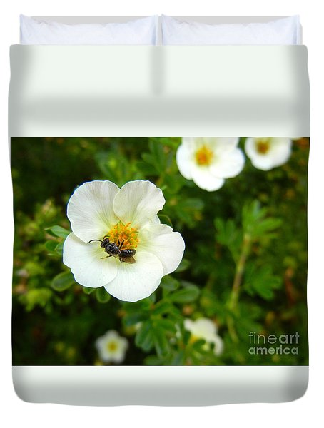 Massachusetts Carpenter Bee Duvet Cover