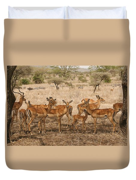 Master Of His Domain Duvet Cover by Gary Hall