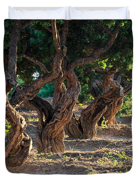 Mastic Tree   Duvet Cover
