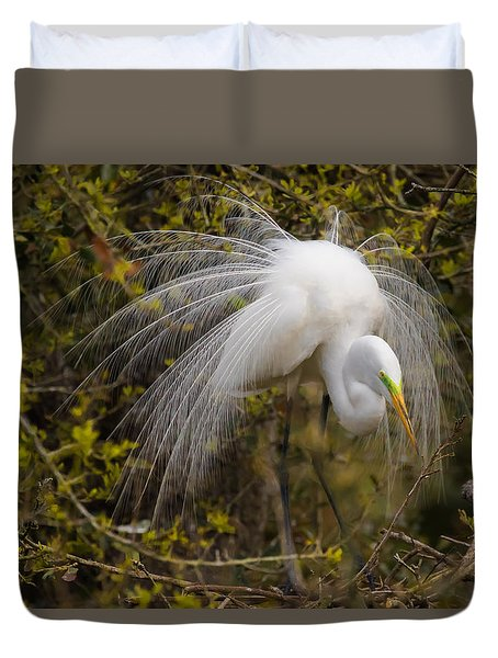 Duvet Cover featuring the photograph Mating Egret by Kelly Marquardt