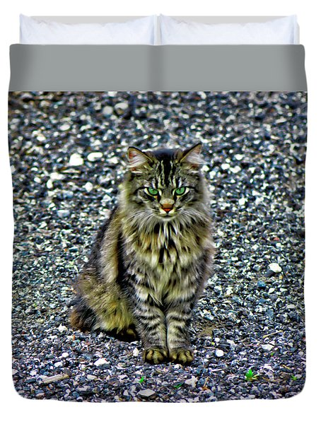 Mattie The Main Coon Cat Duvet Cover