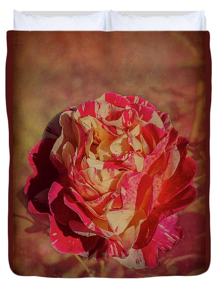 Duvet Cover featuring the photograph Maurice Ultillo by Elaine Teague