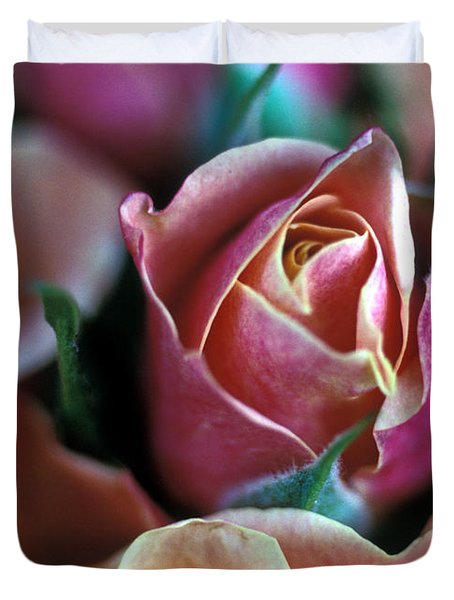 Mauve And Peach Roses Duvet Cover by Kathy Yates