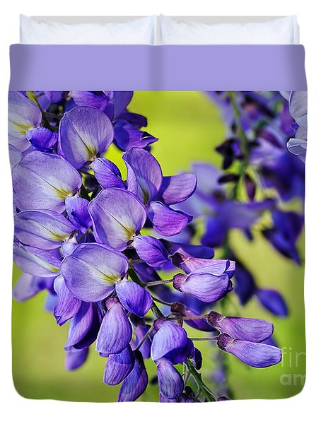 Mauve Wisteria Duvet Cover by Kaye Menner