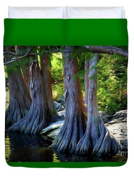 Mckinney Falls State Park - Texas 12118-2 Duvet Cover