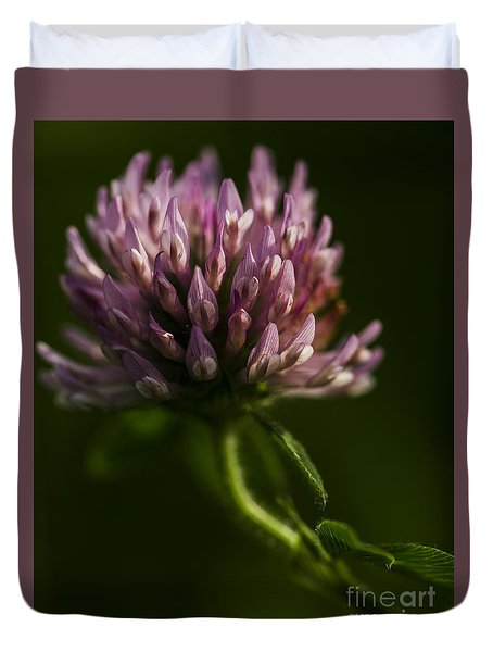 Duvet Cover featuring the photograph Meadow Clover by JT Lewis