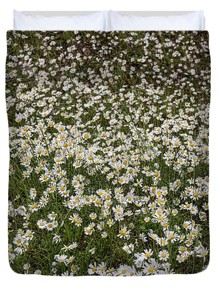 Duvet Cover featuring the photograph Meadow Of Daisey Wildflowers Panorama by James BO Insogna