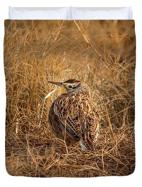 Meadowlark Hiding In Grass Duvet Cover by Robert Frederick