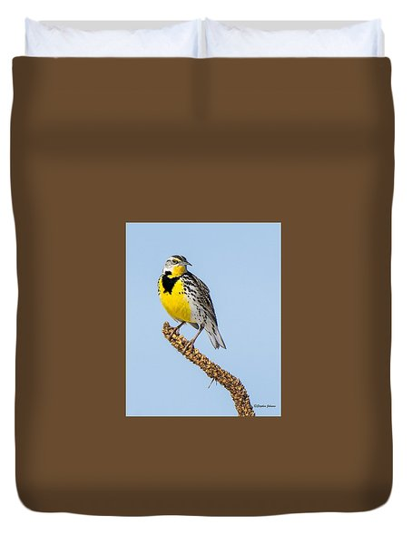 Meadowlark On Mullein Stalk Duvet Cover by Stephen Johnson