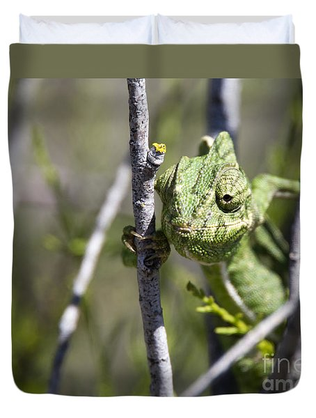 Mediterranean Chameleon Duvet Cover
