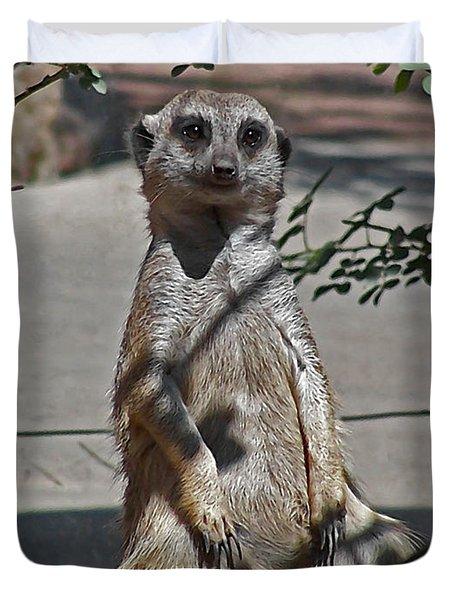 Meerkat 2 Duvet Cover by Ernie Echols