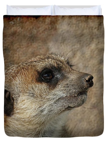 Meerkat 3 Duvet Cover by Ernie Echols