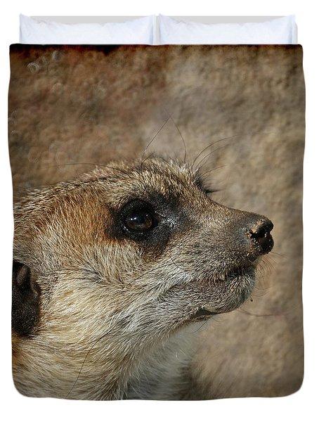 Meerkat 3 Duvet Cover by Ernie Echols