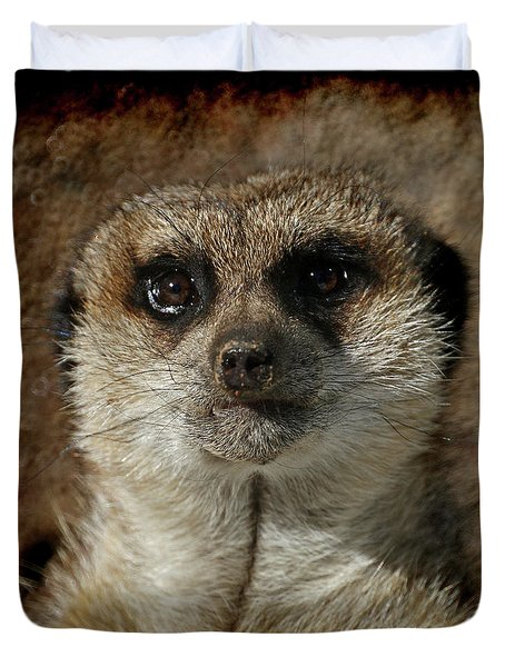 Meerkat 4 Duvet Cover by Ernie Echols