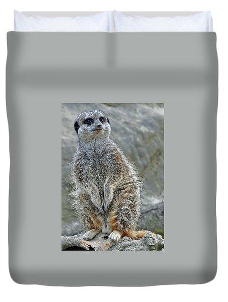 Meerkat Poses Duvet Cover