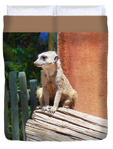 Meerkat Sentry Duvet Cover