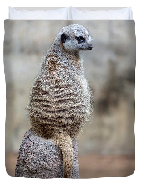 Meerkat Sitting And Looking Right Duvet Cover