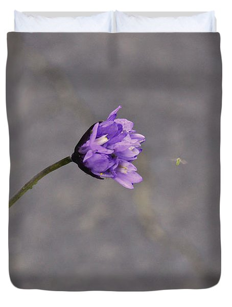 Meeting And Greeting Of Spring Duvet Cover