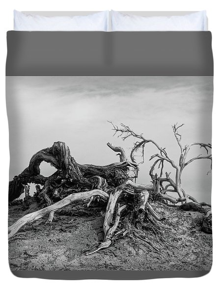 Mesquite Roots - Death Valley 2015 Duvet Cover