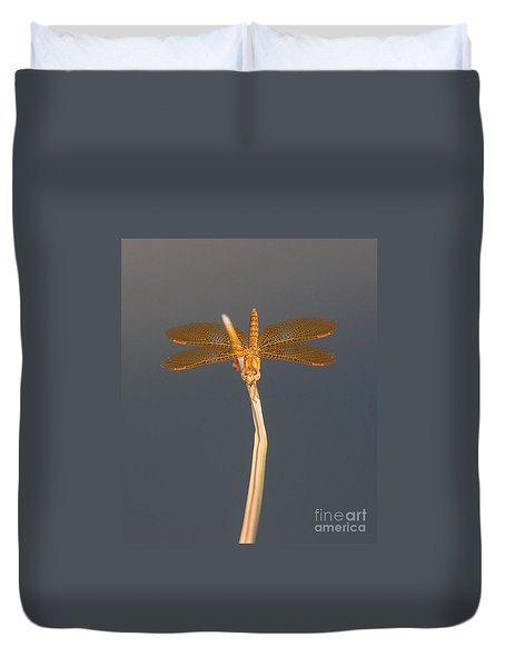 Duvet Cover featuring the photograph Mexican Amberwing On An Overcast Day by Ruth Jolly