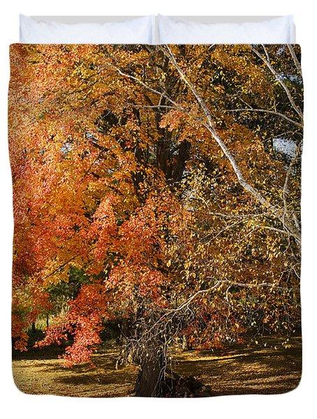 Michigan Autumn 1 Duvet Cover