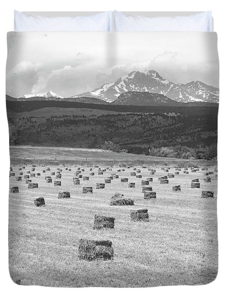 Mid June Colorado Hay  And The Twin Peaks Longs And Meeker Bw Duvet Cover by James BO  Insogna