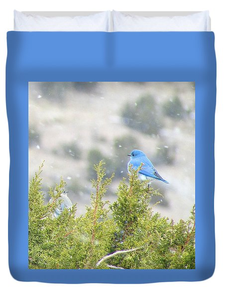 Duvet Cover featuring the photograph Mid-winter Blues by Brenda Pressnall