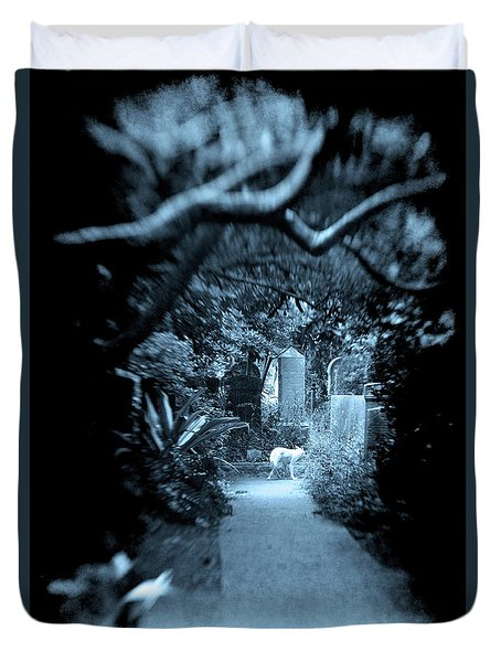 Duvet Cover featuring the photograph Midnight In The Garden O by Jennifer Wright