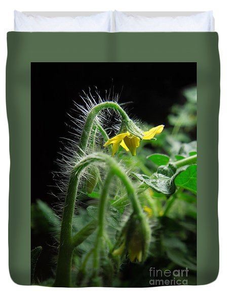 Duvet Cover featuring the photograph Mighty Mini Tomato Blooms by Renee Trenholm
