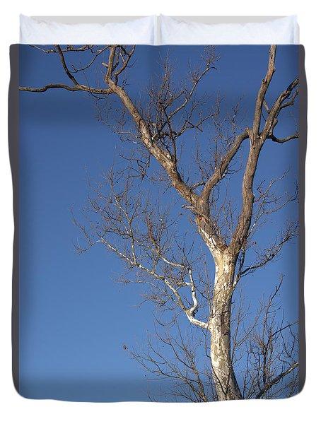 Mighty Tree Duvet Cover