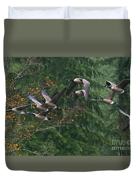 Migrating Canada Geese Duvet Cover