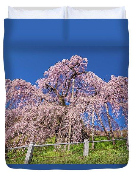 Duvet Cover featuring the photograph Miharu Takizakura Weeping Cherry31 by Tatsuya Atarashi