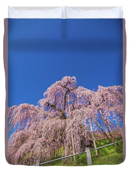 Duvet Cover featuring the photograph Miharu Takizakura Weeping Cherry32 by Tatsuya Atarashi