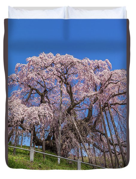 Duvet Cover featuring the photograph Miharu Takizakura Weeping Cherry55 by Tatsuya Atarashi