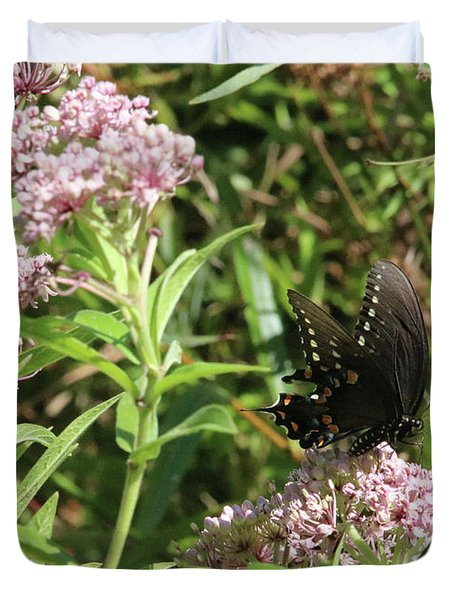 Male American Swallowtail Papilio Polyxenes Duvet Cover