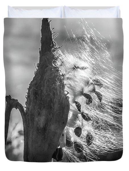 Milkweed Pod Back Lit B And W Duvet Cover